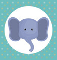 cute elephant head tender character vector image vector image