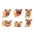 cute pug dog with various emotions set funny vector image vector image