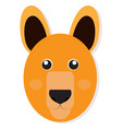 isolated kangaroo face vector image vector image