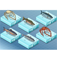 isometric fishes on sea vector image