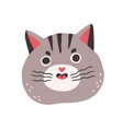 cute cat with funny angry face meowing chubby vector image vector image