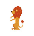 cute funny lion cartoon character sitting vector image
