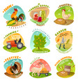 farm emblems set vector image vector image