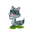 gray raccoon with surprised face expression vector image vector image