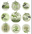 olive retro labels vector image vector image
