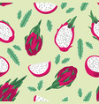 summer pattern with dragon fruit pitaya flowers vector image vector image