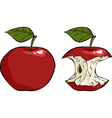 apple and apple core vector image vector image