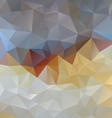 gray blue opal polygonal triangular pattern vector image vector image