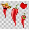 hot chilli pepper big set vector image vector image