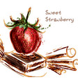 juicy red strawberry and peace of chocolate vector image