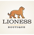 Lioness logo Lion design template Shop or vector image vector image