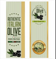 olive banner 2 vector image vector image