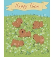 Happy Chow-chow on the blossoming field vector image