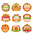 autumn nature badge set with leaf and pumpkin vector image vector image