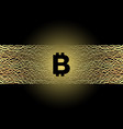 black bitcoin symbol on golden electric lines vector image