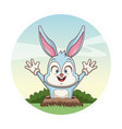 cute bunny in the ground vector image