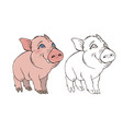 cute pig in color and black and white vector image vector image