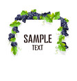 frame with grapes vector image vector image