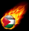 Round glossy icon of palestine vector image vector image