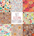 set autumn pattern vector image