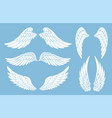 set hand drawn bird or angel wings different vector image vector image
