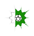 soccer ball on a nigerian emblem vector image vector image