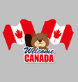beaver canadian animal scene vector image vector image
