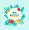 hand drawn tropical hello summer background vector image