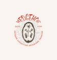 hedgehog badge spiny forest wild animal label vector image vector image