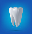 tooth 3D render vector image vector image