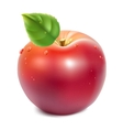Red apple with green leaf vector image