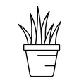 aloe pot icon outline style vector image vector image