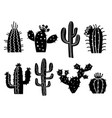 cactuses silhouette set aloe vector image vector image