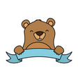 cute bear and ribbon vector image