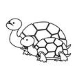 cute family turtles wild characters vector image vector image