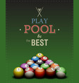play pool poster vector image