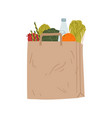 brown paper pack with healthy groceries vector image