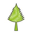 christmas tree decorative icon vector image