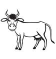 cow contour vector image vector image