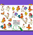 find two identical chicken pictures game for kids vector image vector image