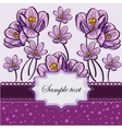 Floral background with crocuses vector image vector image