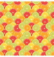 Fresh colorful citrus fruits seamless pattern vector image vector image
