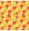 Fresh colorful citrus fruits seamless pattern