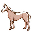 horse hand drawn icon racehorse courser chestnut vector image