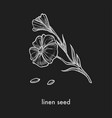 linen seed and flower on thin stem monochrome vector image vector image