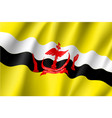 national flag of brunei vector image