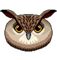 pixel owl portrait detailed isolated vector image vector image