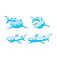 shark logo identity design outline set concept vector image