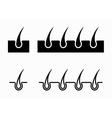black hair follicle icons set vector image