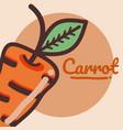 carrot vegetable cartoon vector image